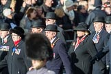 March Past, Remembrance Sunday at the Cenotaph 2016. Cenotaph, Whitehall, London SW1, London, Greater London, United Kingdom, on 13 November 2016 at 12:37, image #358