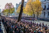 The western side of Whitehall before the begin of the March Past, after the Cenotaph Ceremony on Remembrance Sunday at the Cenotaph, Whitehall, Westminster, London, 11 November 2018, 11:37.