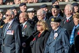 Fleet Air Arm Association  (Group E8, 5 members) during the Royal British Legion March Past on Remembrance Sunday at the Cenotaph, Whitehall, Westminster, London, 11 November 2018, 11:42.