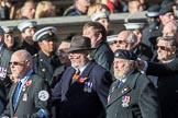 Fleet Air Arm Safety Equipment & Survival Association  (Group E14, 22 members) during the Royal British Legion March Past on Remembrance Sunday at the Cenotaph, Whitehall, Westminster, London, 11 November 2018, 11:43.