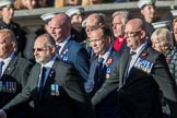 Sea Harrier (Group E15, 30 members) during the Royal British Legion March Past on Remembrance Sunday at the Cenotaph, Whitehall, Westminster, London, 11 November 2018, 11:43.