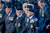 Royal Naval Medical Branch Ratings and Sick Berth Staff Association   (Group E35, 24 members) during the Royal British Legion March Past on Remembrance Sunday at the Cenotaph, Whitehall, Westminster, London, 11 November 2018, 11:45.