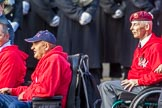British Ex-Services Wheelchair Sports Association  (Group AA2, 14 members) during the Royal British Legion March Past on Remembrance Sunday at the Cenotaph, Whitehall, Westminster, London, 11 November 2018, 11:48.