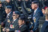 National Gulf Veterans and Families Association (Group F14, 25 members) during the Royal British Legion March Past on Remembrance Sunday at the Cenotaph, Whitehall, Westminster, London, 11 November 2018, 11:52.