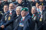The South Atlantic Medal Association 1982 (Group F17, 150 members) during the Royal British Legion March Past on Remembrance Sunday at the Cenotaph, Whitehall, Westminster, London, 11 November 2018, 11:52.
