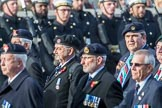 The South Atlantic Medal Association 1982 (Group F17, 150 members) during the Royal British Legion March Past on Remembrance Sunday at the Cenotaph, Whitehall, Westminster, London, 11 November 2018, 11:53.