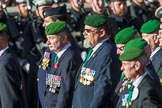 The Ammunition Technicians' Association (Group F28, 37 members) during the Royal British Legion March Past on Remembrance Sunday at the Cenotaph, Whitehall, Westminster, London, 11 November 2018, 11:54.