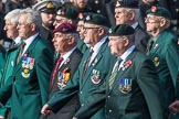 Durham Light Infantry Association (Group A5, 27 members) during the Royal British Legion March Past on Remembrance Sunday at the Cenotaph, Whitehall, Westminster, London, 11 November 2018, 11:56.