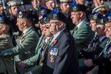 \a11z during the Royal British Legion March Past on Remembrance Sunday at the Cenotaph, Whitehall, Westminster, London, 11 November 2018, 11:57.