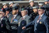 Long Eaton Branch The Worcestershire and Sherwood Forest Association (Group A32, 9 members) during the Royal British Legion March Past on Remembrance Sunday at the Cenotaph, Whitehall, Westminster, London, 11 November 2018, 12:02.