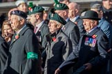 Combined Irish Regiments Association (Group A36, 34 members) during the Royal British Legion March Past on Remembrance Sunday at the Cenotaph, Whitehall, Westminster, London, 11 November 2018, 12:02.