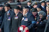 RAVC and RADC Associations (Group B2, 27 members) during the Royal British Legion March Past on Remembrance Sunday at the Cenotaph, Whitehall, Westminster, London, 11 November 2018, 12:05.