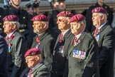 The Parachute Squadron Royal Armoured Corps (Group B28, 19 members) during the Royal British Legion March Past on Remembrance Sunday at the Cenotaph, Whitehall, Westminster, London, 11 November 2018, 12:12.