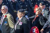 The Royal Artillery Association (Group B35, 32 members) during the Royal British Legion March Past on Remembrance Sunday at the Cenotaph, Whitehall, Westminster, London, 11 November 2018, 12:13.