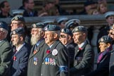 RAF Linguists' Associations (RAFLing) (Group C6, 20 members) during the Royal British Legion March Past on Remembrance Sunday at the Cenotaph, Whitehall, Westminster, London, 11 November 2018, 12:15.