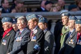 RAF 8 Squadron Association (Group C9, 12 members) during the Royal British Legion March Past on Remembrance Sunday at the Cenotaph, Whitehall, Westminster, London, 11 November 2018, 12:16.