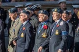 RAF Habbaniya Association (Group C10, 14 members) during the Royal British Legion March Past on Remembrance Sunday at the Cenotaph, Whitehall, Westminster, London, 11 November 2018, 12:16.