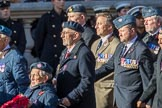 RAF Movements and Mobile Air Movements Squadrons Association (Group C15, 50 members) during the Royal British Legion March Past on Remembrance Sunday at the Cenotaph, Whitehall, Westminster, London, 11 November 2018, 12:16.