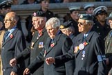 The Blenheim Society (Group C16, 15 members) during the Royal British Legion March Past on Remembrance Sunday at the Cenotaph, Whitehall, Westminster, London, 11 November 2018, 12:17.