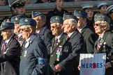 RAF Air Loadmasters Association (Group C21, 25 members) during the Royal British Legion March Past on Remembrance Sunday at the Cenotaph, Whitehall, Westminster, London, 11 November 2018, 12:17.