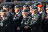 Harrier Force Association (Group C25, 100 members) during the Royal British Legion March Past on Remembrance Sunday at the Cenotaph, Whitehall, Westminster, London, 11 November 2018, 12:18.