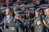 The 9 Squadron Association RAF (Group C27, 21 members) during the Royal British Legion March Past on Remembrance Sunday at the Cenotaph, Whitehall, Westminster, London, 11 November 2018, 12:19.