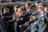 Royal Air Forces Association (Caduceus) branch (Group C31, 22 members) during the Royal British Legion March Past on Remembrance Sunday at the Cenotaph, Whitehall, Westminster, London, 11 November 2018, 12:19.