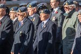 PJI Canopy Club Association (Group C32, 22 members) during the Royal British Legion March Past on Remembrance Sunday at the Cenotaph, Whitehall, Westminster, London, 11 November 2018, 12:19.