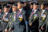 Allied Command in Europe Mobile Force AMF(L) (Group D13, 61 members) during the Royal British Legion March Past on Remembrance Sunday at the Cenotaph, Whitehall, Westminster, London, 11 November 2018, 12:22.