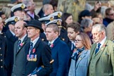 Commonwealth War Graves Commission (Group M50, 19 members) during the Royal British Legion March Past on Remembrance Sunday at the Cenotaph, Whitehall, Westminster, London, 11 November 2018, 12:31.