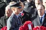 Flight Lieutenant David Rawson, Royal Air Force, Equerry to Prince Michael of Kent, during the Remembrance Sunday Cenotaph Ceremony 2018 at Horse Guards Parade, Westminster, London, 11 November 2018, 10:59.