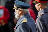 HRH Prince Michael of Kent and HRH The Duke of Kent (Prince Edward) saluting at the Cenotaph during the Remembrance Sunday Cenotaph Ceremony 2018 at Horse Guards Parade, Westminster, London, 11 November 2018, 11:07.