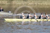 The Boat Race season 2012 - fixture CUBC vs Molesey BC.     on 25 March 2012 at 15:19, image #111