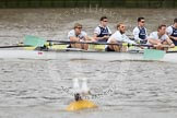 The Boat Race 2012: The 2012 Boat Race, shortly after the start: In the foreground the Cambridge Blue Boat, with David Nelson, Moritz Schramm, Jack Lindeman, in the Oxford boat Dr. Alexander Woods, William Zeng, and Kevin Baum..     on 07 April 2012 at 14:16, image #258