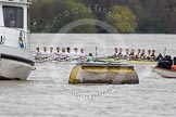 The Boat Race 2012: The 2012 Boat Race, shortly after the start: In the foreground the Cambridge Blue Boat, with David Nelson, Moritz Schramm, Jack Lindeman, Alex Ross, Mike Thorp, Steve Dudek, Alexander Scharp, Niles Garret, and cox Ed Bosson, in the Oxford boat Dr. Alexander Woods, William Zeng, Kevin Baum, Alex Davidson, Karl Hudspith, Dr. Hanno Wienhausen, Dan Harvey, stroke Roel Haen, and cox Zoe de Toledo..     on 07 April 2012 at 14:17, image #272