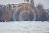 The Boat Race season 2013 - fixture CUBC vs Leander. River Thames Tideway between Putney Bridge and Mortlake, London SW15,  United Kingdom, on 02 March 2013 at 16:01, image #170
