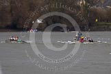 The Boat Race season 2013 - fixture CUBC vs Molesey BC, Goldie vs London RC. Tideway, London SW15,  United Kingdom, on 16 March 2013 at 15:12, image #63