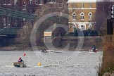 The Boat Race season 2013 - fixture CUBC vs Molesey BC, Goldie vs London RC. Tideway, London SW15,  United Kingdom, on 16 March 2013 at 15:16, image #77
