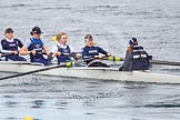 The Boat Race season 2013 - fixture OUWBC vs Olympians: In the Oxford (OUWBC) Blue Boat 5 seat Amy Varney, 6 Harriet Keane, 7 Anastasia Chitty, stroke Maxie Scheske, and cox Katie Apfelbaum.. Dorney Lake, Dorney, Windsor, Buckinghamshire, United Kingdom, on 16 March 2013 at 11:36, image #77