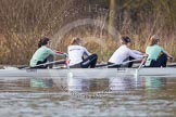 The Boat Race season 2013 - CUWBC training: The CUWBC Blue Boat at race pace - bow Caroline Reid, 2 Fay Sandford, 3 Melissa Wilson and 4 Jessica Denman.. River Thames near Remenham, Henley-on-Thames, Oxfordshire, United Kingdom, on 19 March 2013 at 16:07, image #121