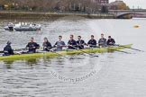The Boat Race 2013: The crew of the Oxford reserve boat Isis getting ready for the Isis/Goldie race, here cox Laurence Harvey, stroke Thomas Watson, 7 seat Rev'd James Stephenson, 6 Benjamin French, 5 Joseph Dawson, 4 William Zeng, 3 Dr Alexander Woods, 2 Nicholas Hazell, and at bow Iain Mandale.. Putney, London SW15,  United Kingdom, on 31 March 2013 at 15:17, image #121