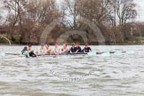 The Boat Race season 2014 - fixture CUWBC vs Thames RC.     on 02 March 2014 at 13:13, image #86