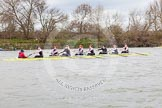 The Boat Race season 2014 - fixture CUWBC vs Thames RC.     on 02 March 2014 at 13:14, image #93