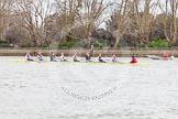 The Boat Race season 2014 - fixture CUWBC vs Thames RC.     on 02 March 2014 at 13:56, image #137