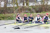 The Boat Race season 2014 - fixture CUWBC vs Thames RC.     on 02 March 2014 at 14:04, image #184