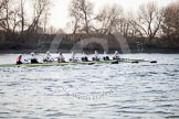 The Boat Race season 2014 - fixture OUBC vs German U23: The German U23-boat approaching the Mile Post.. River Thames between Putney Bridge and Chiswick Bridge,    on 08 March 2014 at 16:49, image #93