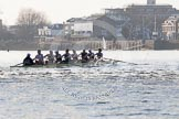 The Boat Race season 2014 - fixture OUBC vs German U23: The OUBC boat in the shadow of Hammersmith Bridge.. River Thames between Putney Bridge and Chiswick Bridge,    on 08 March 2014 at 16:53, image #117