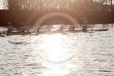 The Boat Race season 2014 - fixture OUBC vs German U23: The German U23-boat near St Paul's School, shot against the low evening sun.. River Thames between Putney Bridge and Chiswick Bridge,    on 08 March 2014 at 16:53, image #120