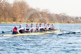 The Boat Race season 2014 - fixture OUBC vs German U23: The German U23 boat at the start of the second race.. River Thames between Putney Bridge and Chiswick Bridge,    on 08 March 2014 at 17:04, image #212