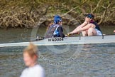 The Women's Boat Race and Henley Boat Races 2014: The Intercollegiate women's race. The Wadham College (Oxford) boat, cox Harriet-Rose Noons, stroke Hannah Lewis.. River Thames, Henley-on-Thames, Buckinghamshire, United Kingdom, on 30 March 2014 at 13:27, image #23